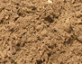Unscreened Enriched Top Soil